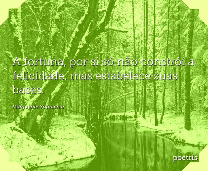 A fortuna, por si só não constrói a felicidade, mas estabelece suas bases