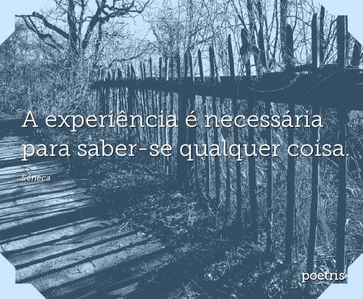 A experiência é necessária para saber-se qualquer coisa
