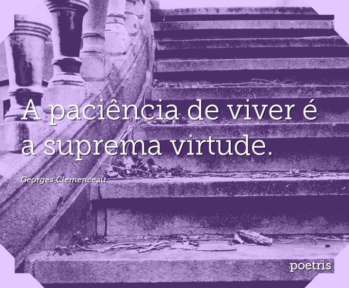 A paciência de viver é a suprema virtude