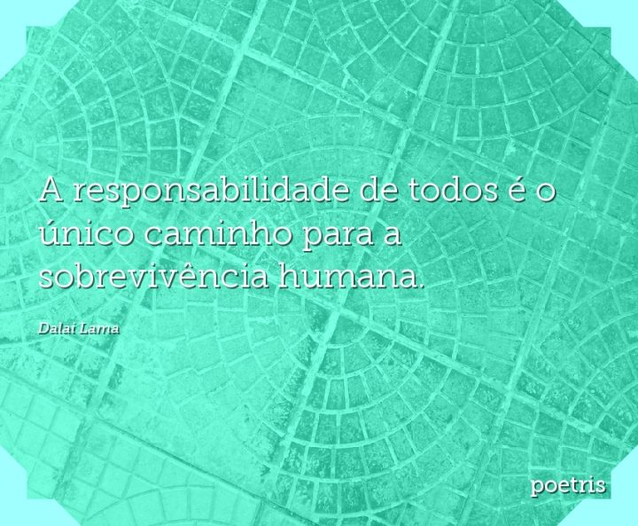 A responsabilidade de todos é o único caminho para a sobrevivência humana