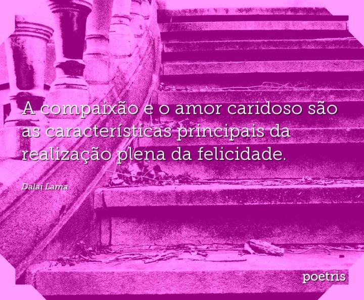 A compaixão e o amor caridoso são as características principais da realização plena da