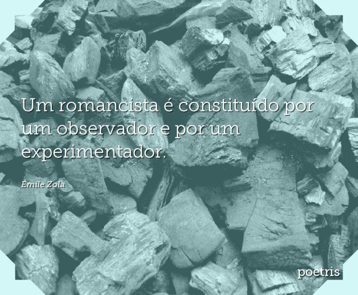 Um romancista é constituído por um observador e por um experimentador