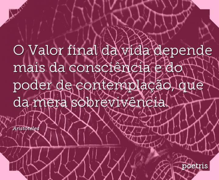 O Valor final da vida depende mais da consciência e do poder de contemplação