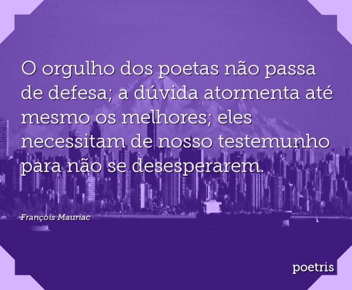 O orgulho dos poetas não passa de defesa; a dúvida atormenta até mesmo os melhores; eles